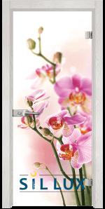 Стъклена интериорна врата Print G 13 2 F